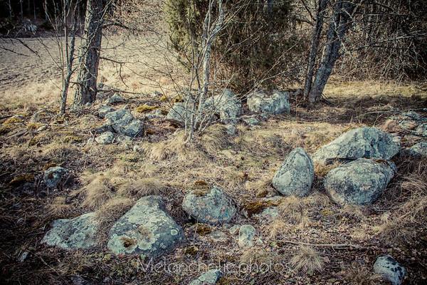 Meisalan muinaiset peltorauniot