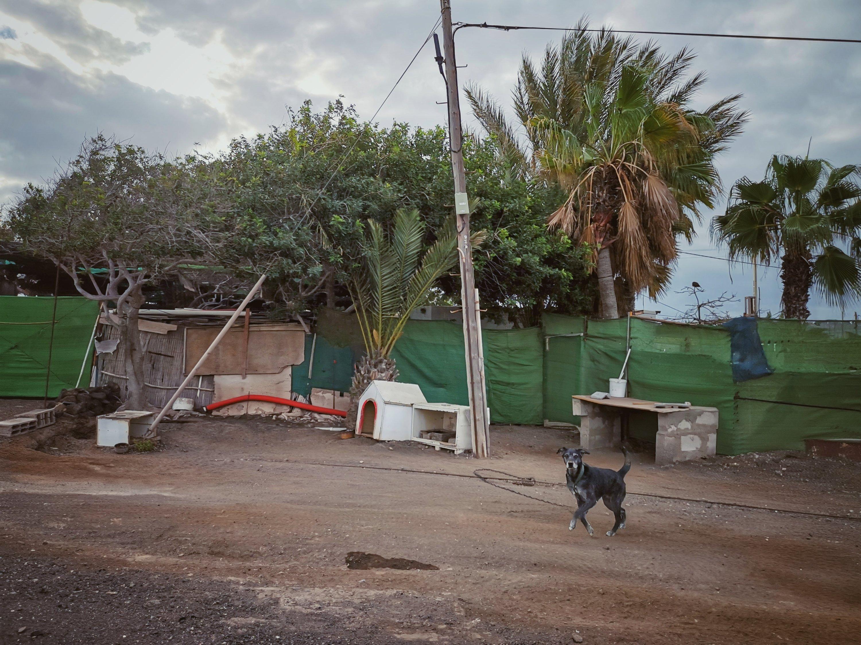 Talviloma Kanariansaarilla - Päivä 4, autolla ympäri Fuerteventuraa, dyynit, sukeltelua kalojen kanssa ja vuoristoa